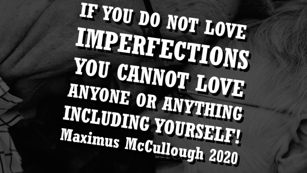 IF YOU DO NOT LOVE IMPERFECTIONS YOU CANNOT LOVE ANYONE OR ANYTHING INCLUDING YOURSELF